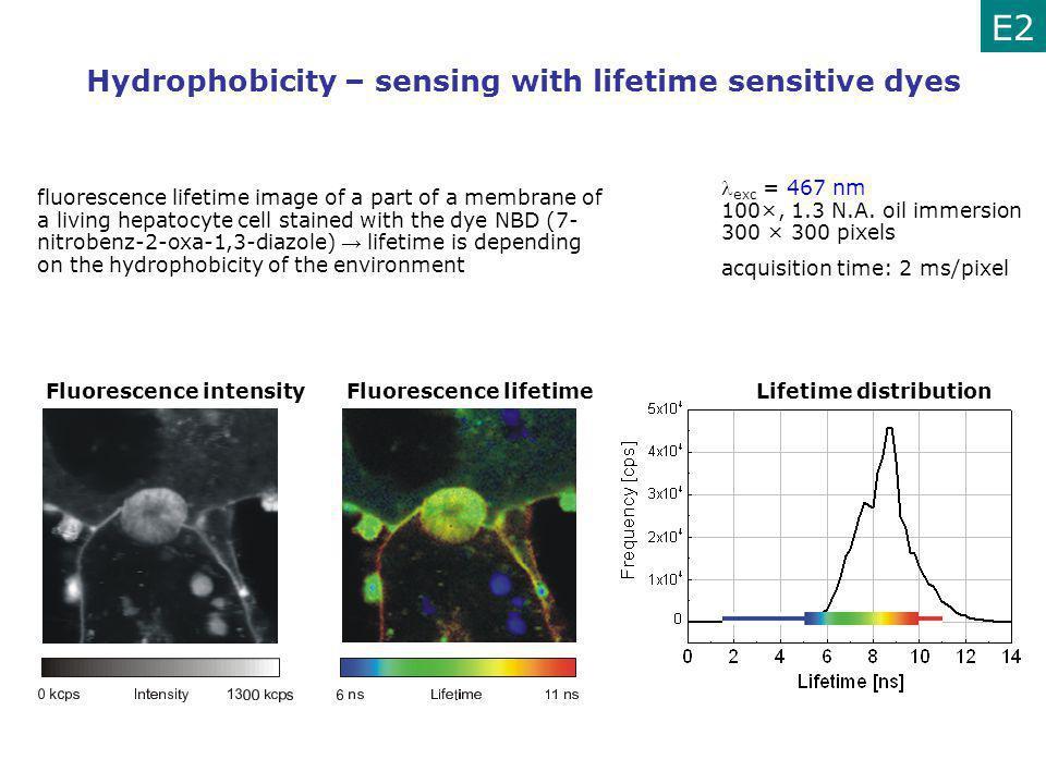 Hydrophobicity – sensing with lifetime sensitive dyes