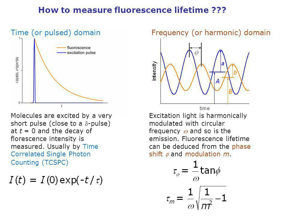 How to measure fluorescence lifetime
