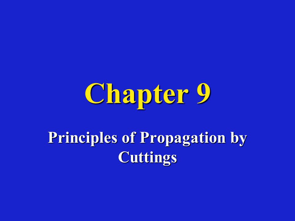 Principles of Propagation by Cuttings