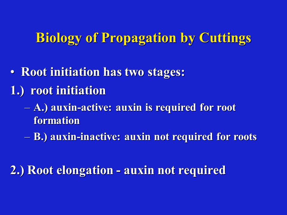 Biology of Propagation by Cuttings
