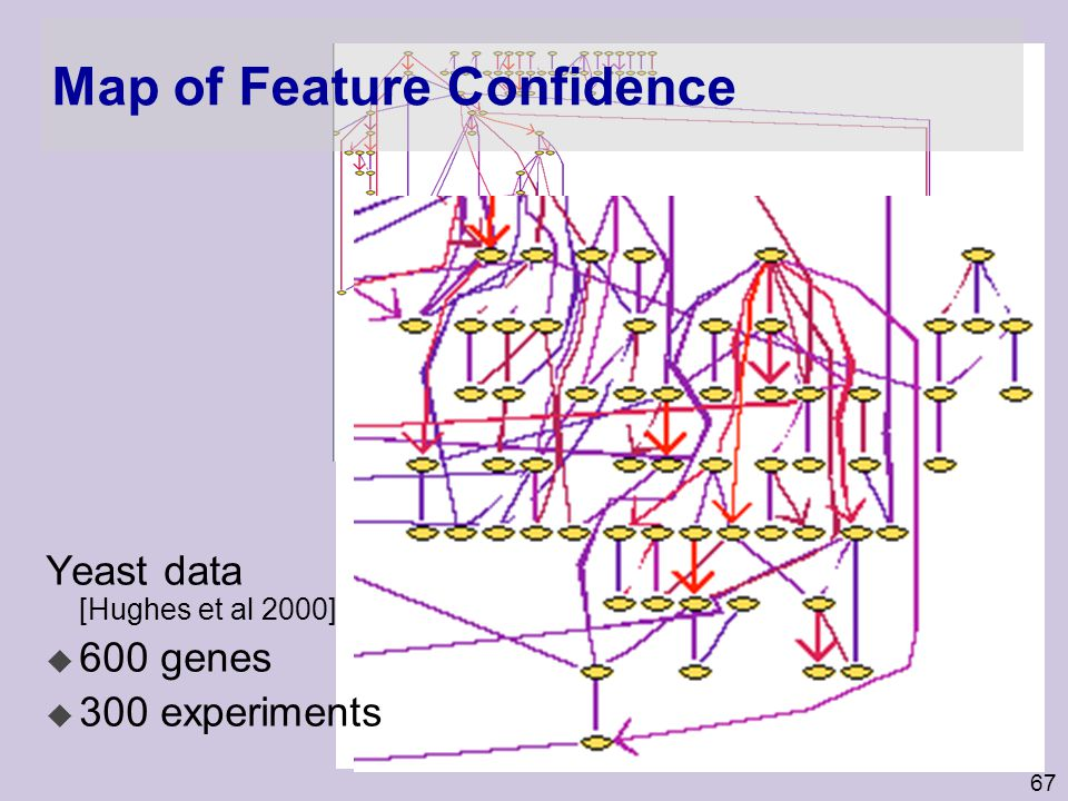 Map of Feature Confidence