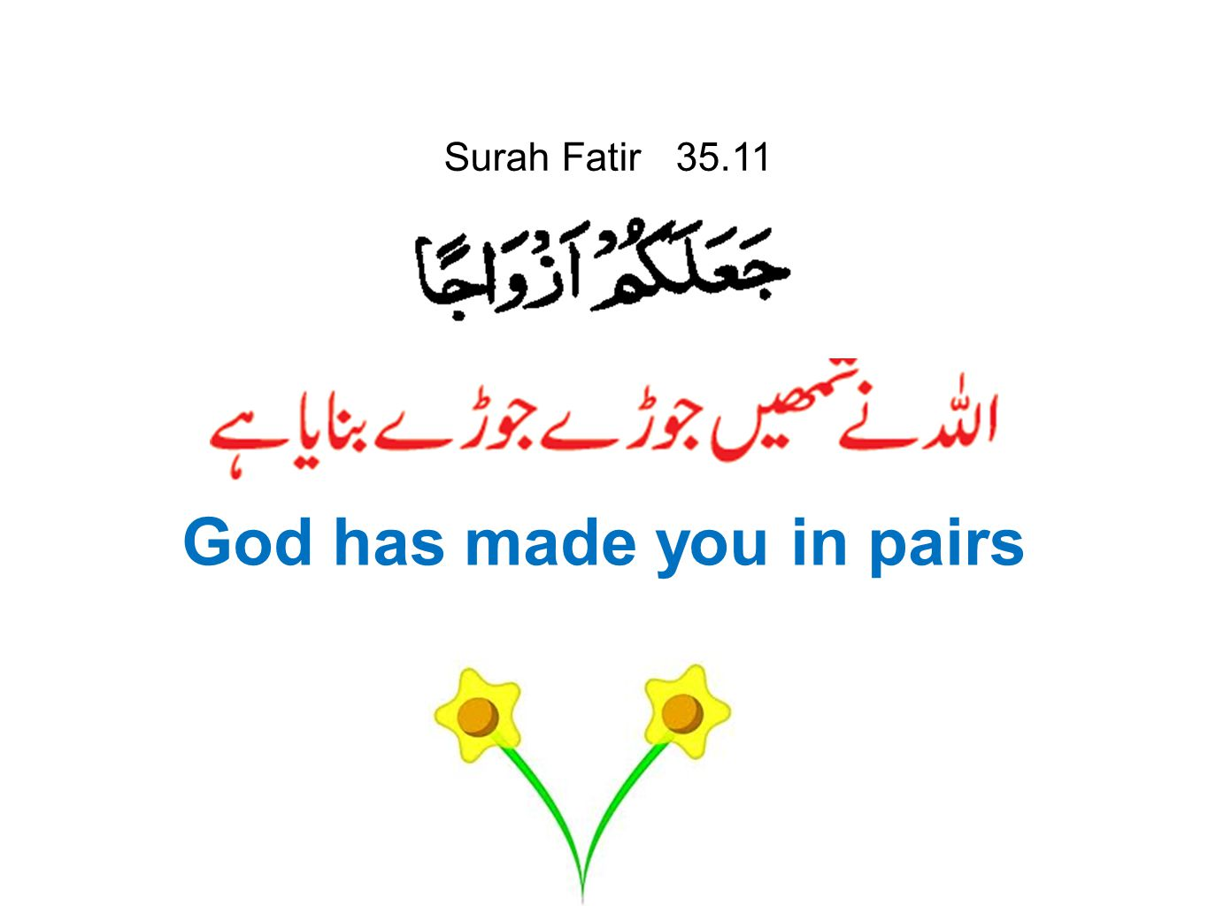 God has made you in pairs
