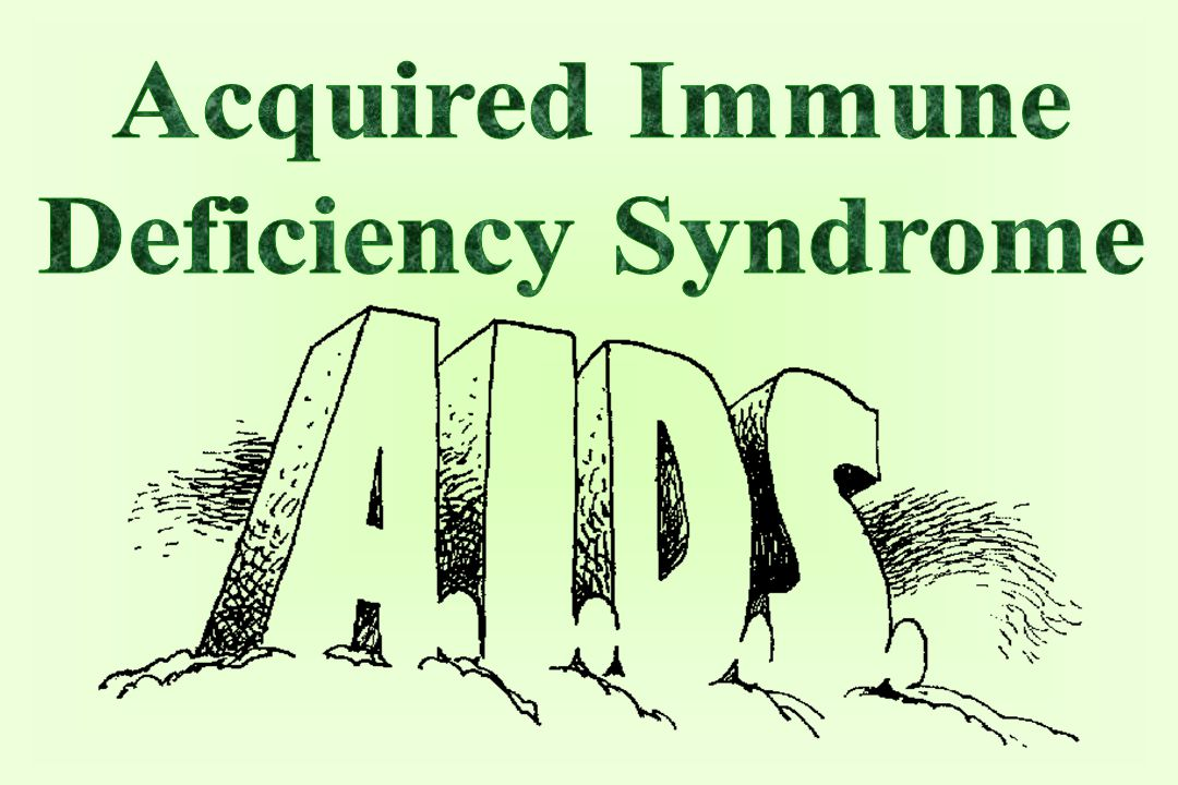 the introduction of acquired immune deficiency syndrome aids Biology of infection and immune disease in hiv/aids immunodeficiency virus infection and acquired immune deficiency syndrome is introduction ii.