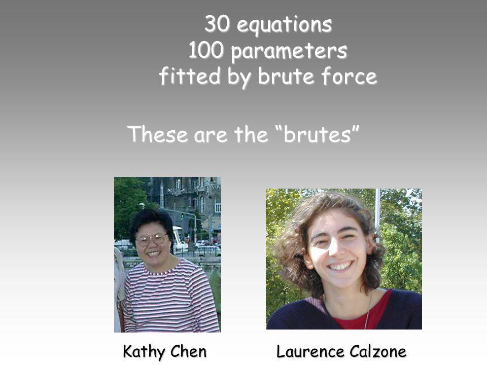 30 equations 100 parameters fitted by brute force