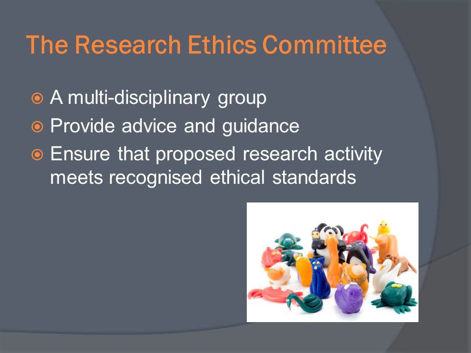 The Research Ethics Committee