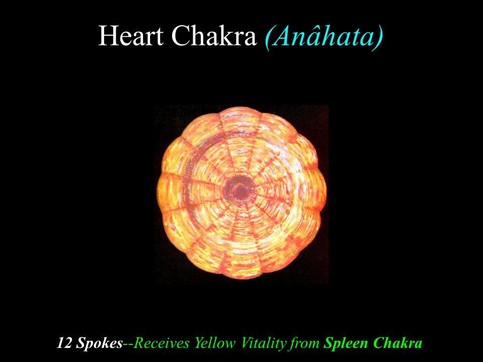 Heart Chakra (Anâhata)