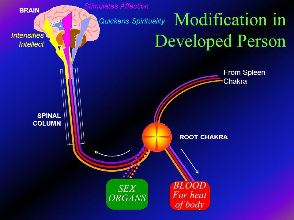 Modification in Developed Person