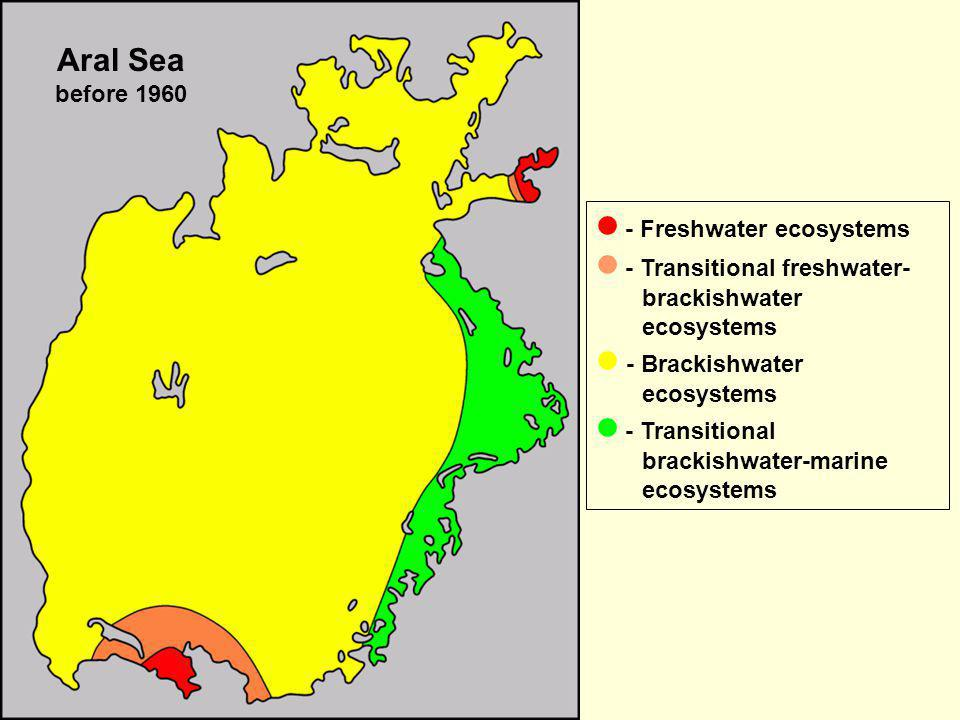 Aral Sea before 1960  - Freshwater ecosystems.  - Transitional freshwater-brackishwater ecosystems.