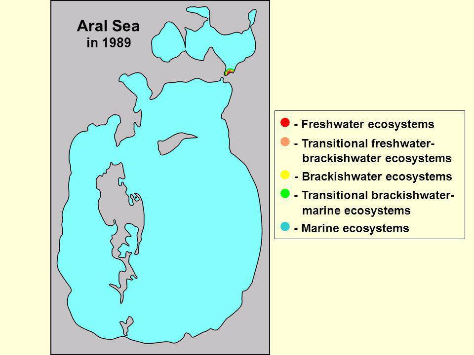 Aral Sea in 1989  - Freshwater ecosystems.  - Transitional freshwater-brackishwater ecosystems.  - Brackishwater ecosystems.