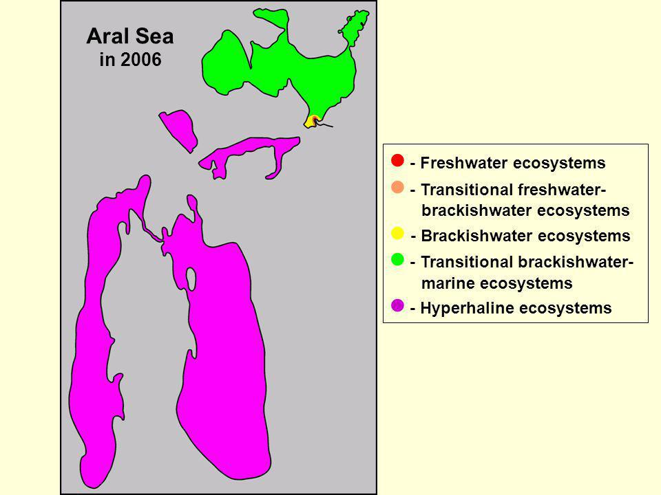 Aral Sea in 2006  - Freshwater ecosystems.  - Transitional freshwater-brackishwater ecosystems.  - Brackishwater ecosystems.
