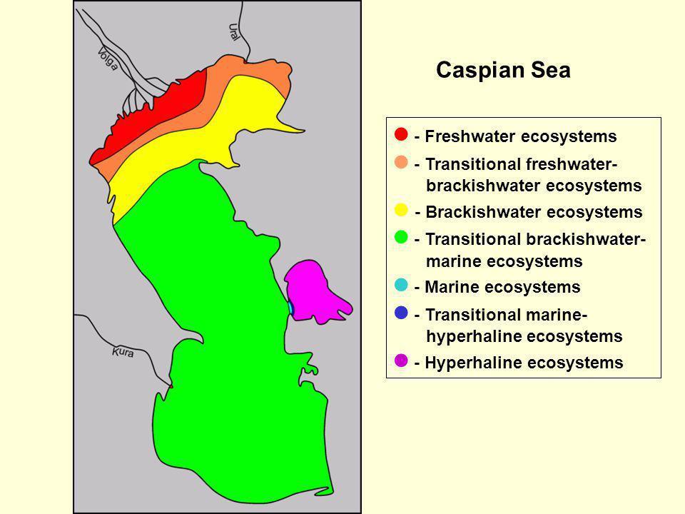 Caspian Sea  - Freshwater ecosystems.  - Transitional freshwater-brackishwater ecosystems.  - Brackishwater ecosystems.