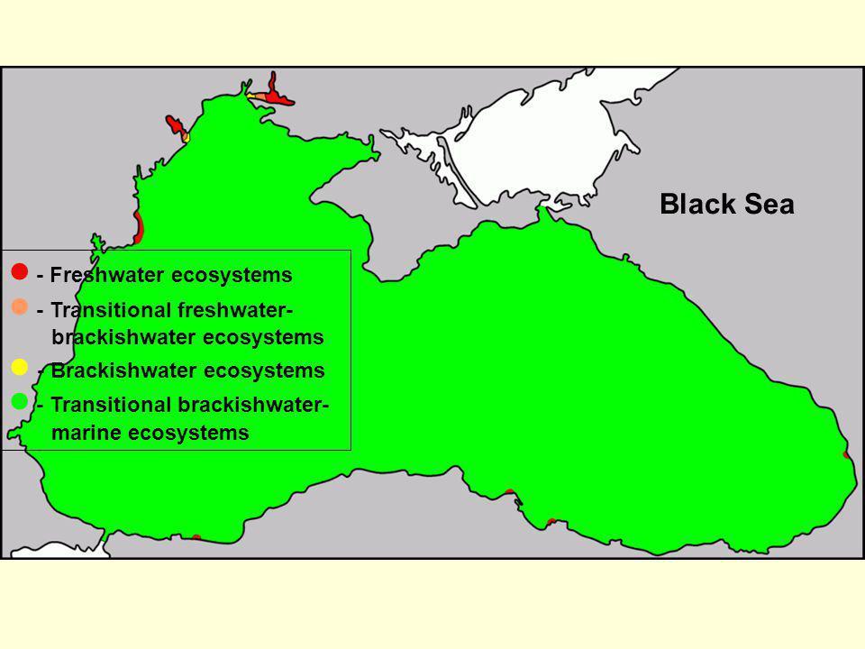 Black Sea  - Freshwater ecosystems.  - Transitional freshwater-brackishwater ecosystems.  - Brackishwater ecosystems.