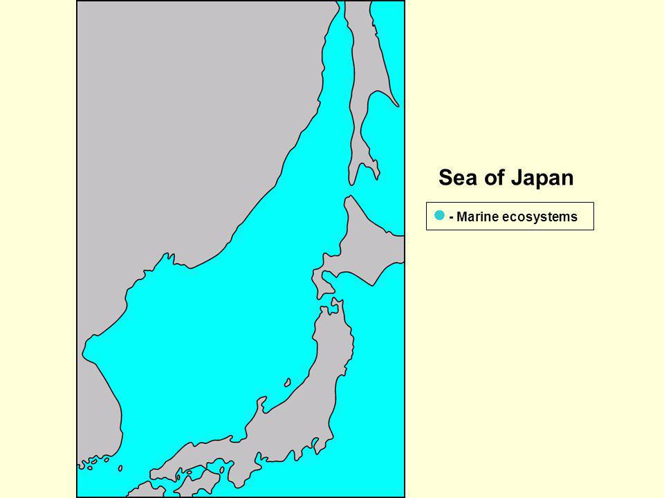 Sea of Japan  - Marine ecosystems