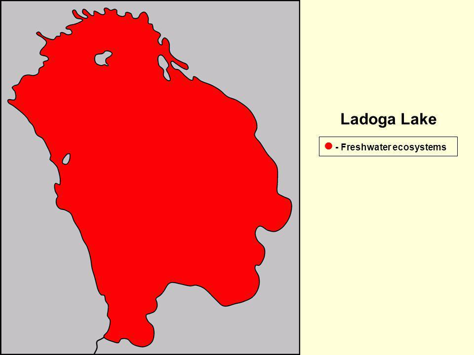 Ladoga Lake  - Freshwater ecosystems