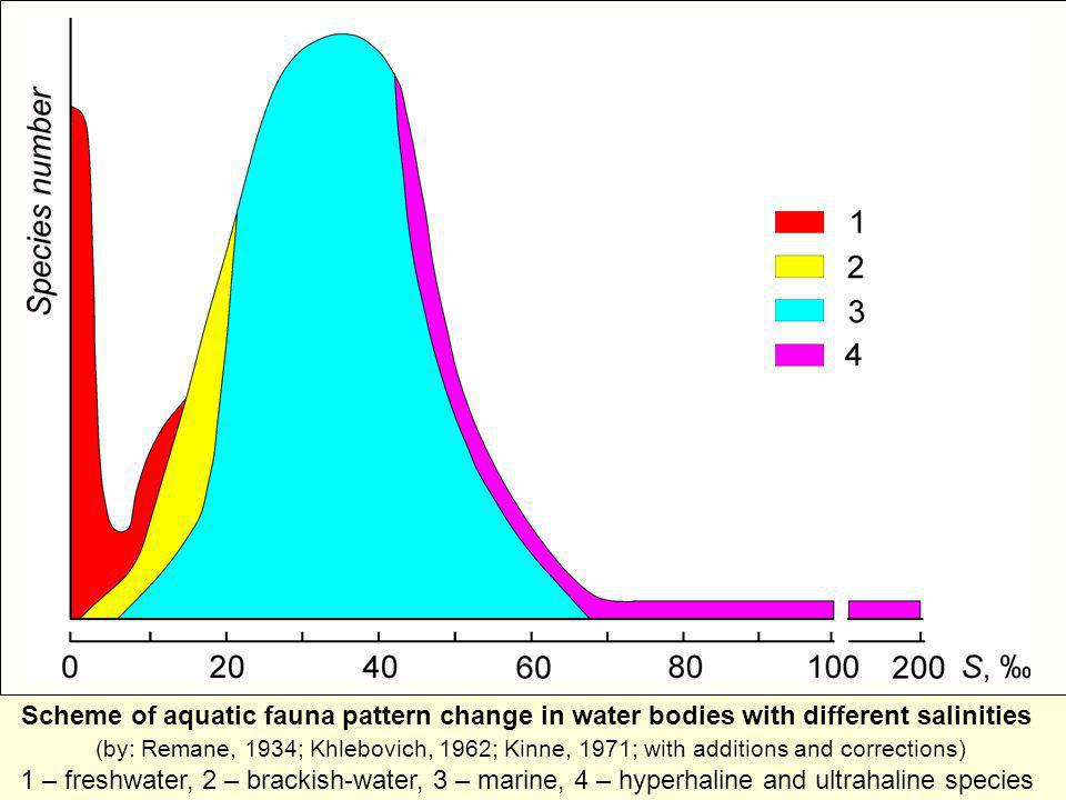 Scheme of aquatic fauna pattern change in water bodies with different salinities (by: Remane, 1934; Khlebovich, 1962; Kinne, 1971; with additions and corrections) 1 – freshwater, 2 – brackish-water, 3 – marine, 4 – hyperhaline and ultrahaline species