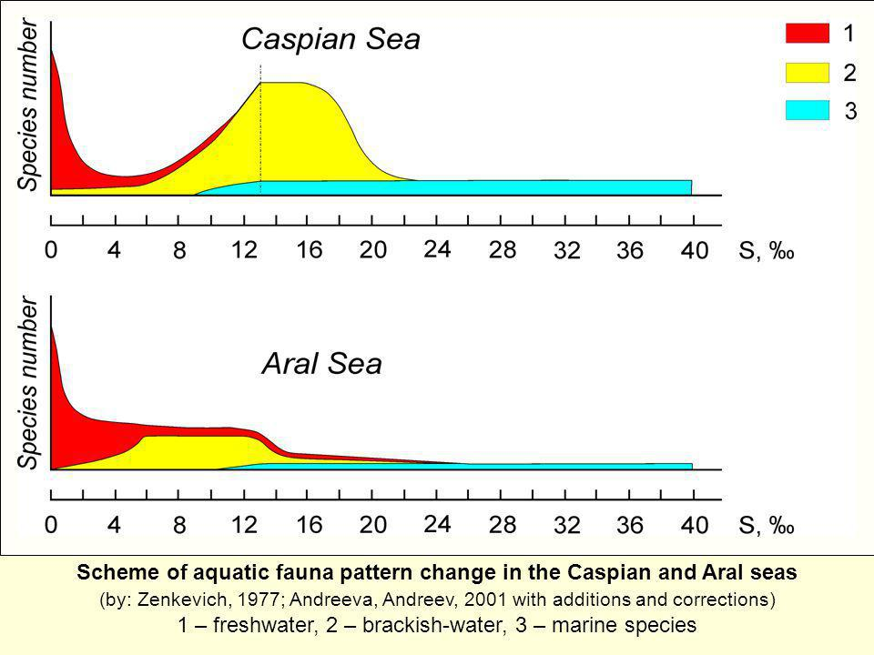 Scheme of aquatic fauna pattern change in the Caspian and Aral seas (by: Zenkevich, 1977; Andreeva, Andreev, 2001 with additions and corrections) 1 – freshwater, 2 – brackish-water, 3 – marine species