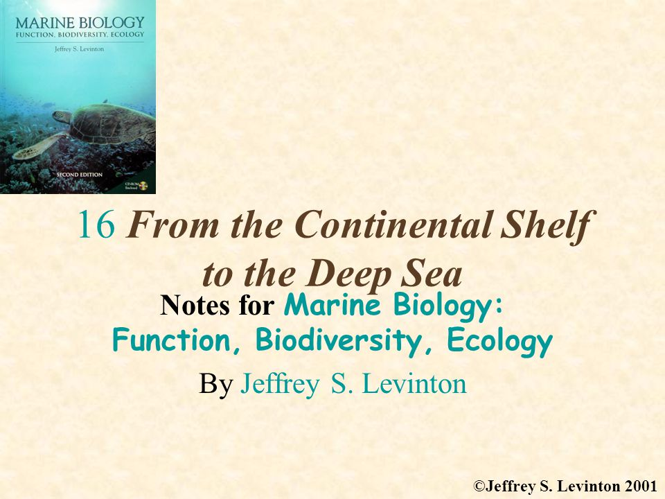 16 From the Continental Shelf to the Deep Sea