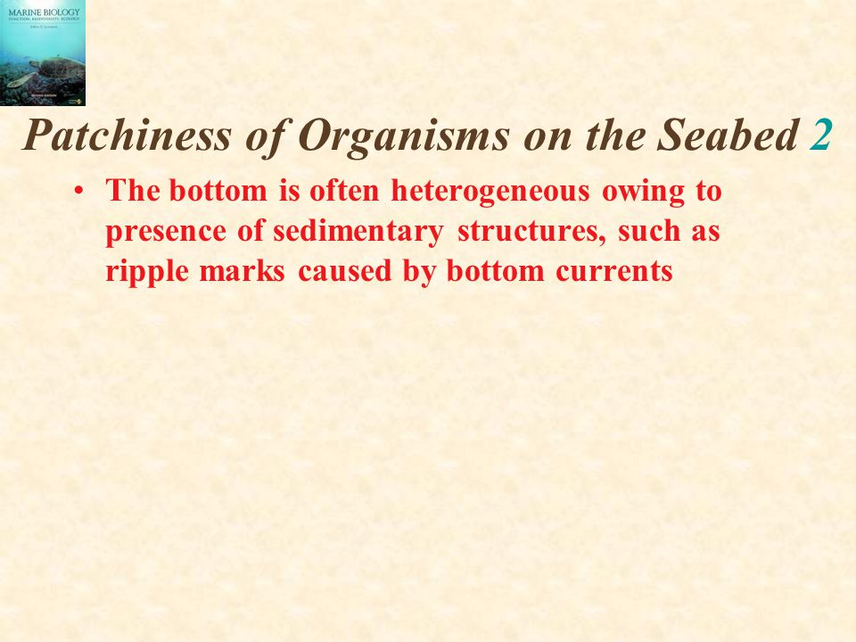 Patchiness of Organisms on the Seabed 2