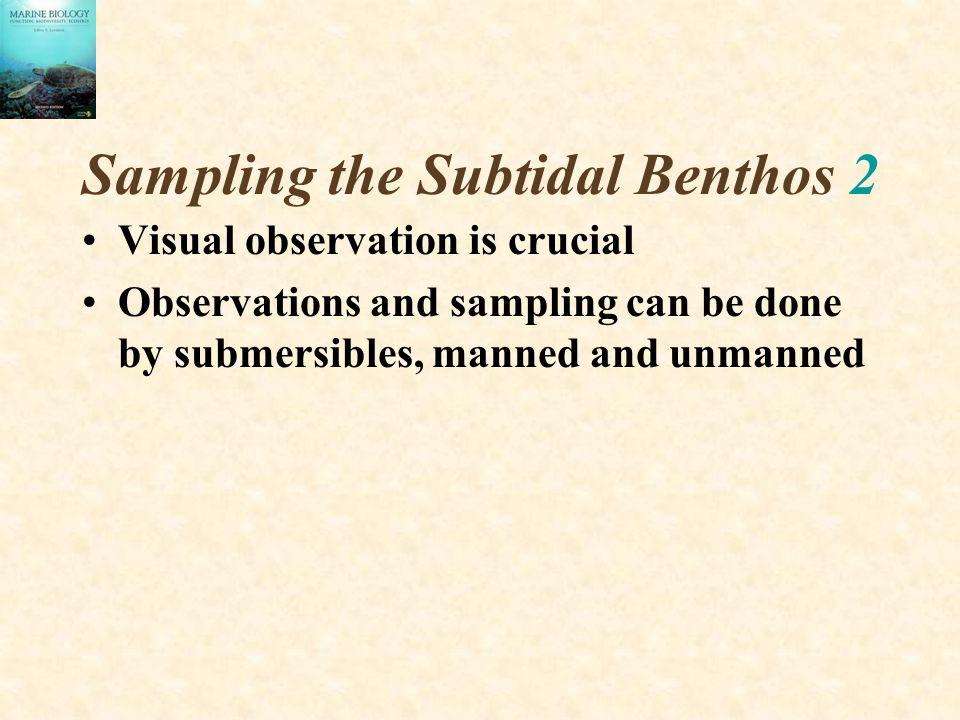 Sampling the Subtidal Benthos 2