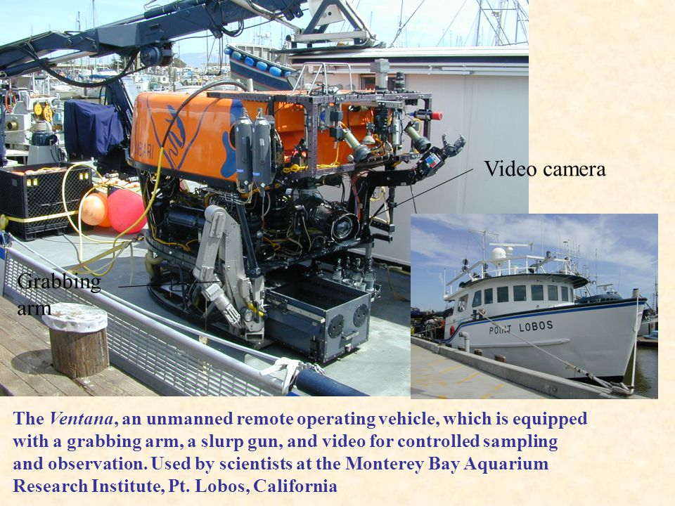 Video camera Grabbing arm