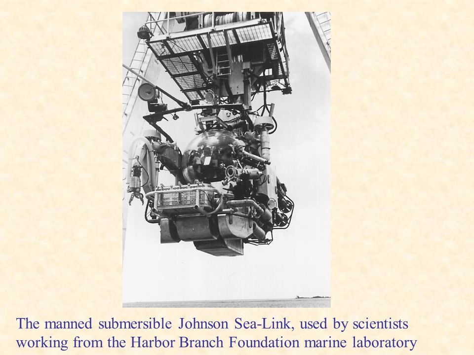 The manned submersible Johnson Sea-Link, used by scientists