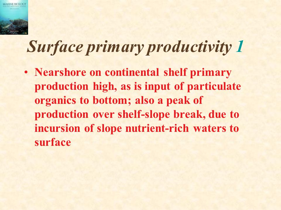 Surface primary productivity 1