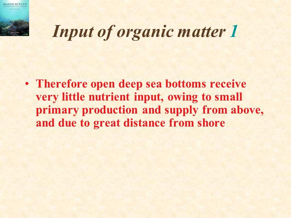 Input of organic matter 1