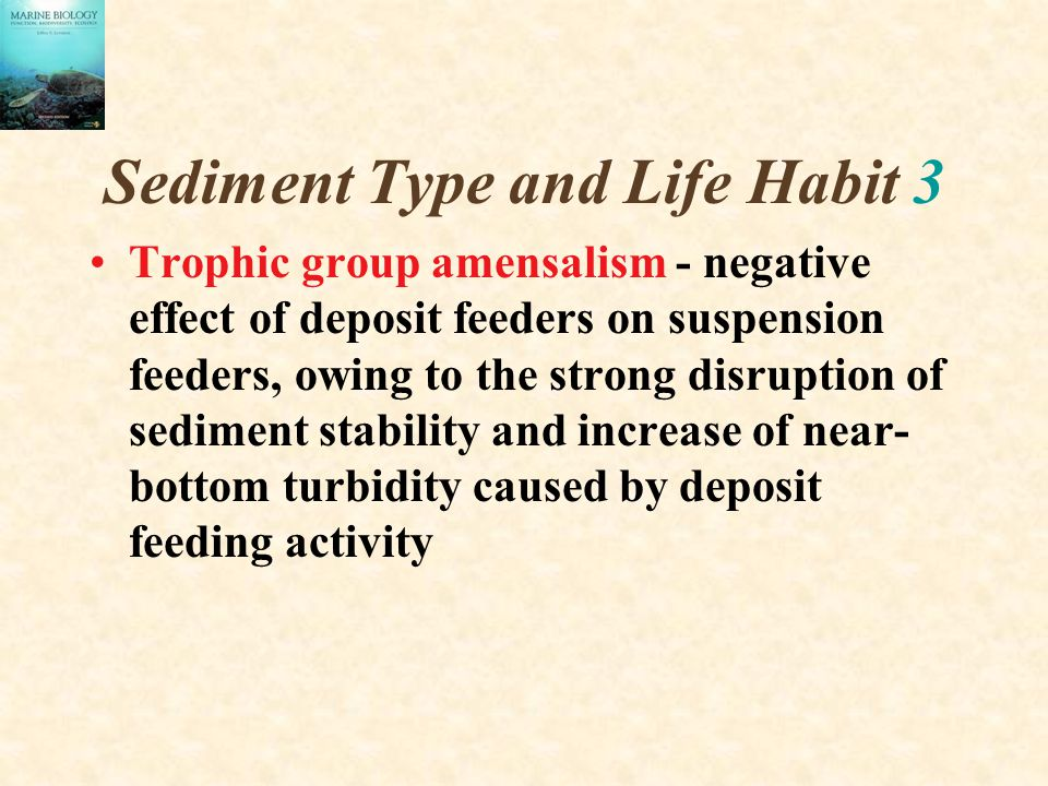 Sediment Type and Life Habit 3