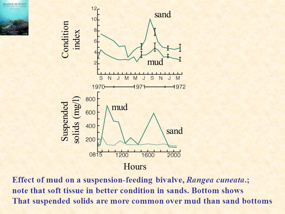 sand Condition index mud mud Suspended solids (mg/l) sand Hours
