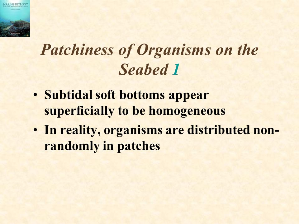 Patchiness of Organisms on the Seabed 1
