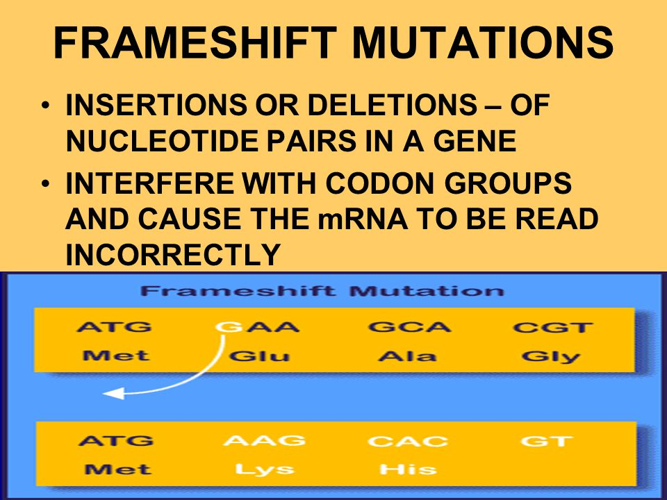 FRAMESHIFT MUTATIONS INSERTIONS OR DELETIONS – OF NUCLEOTIDE PAIRS IN A GENE.