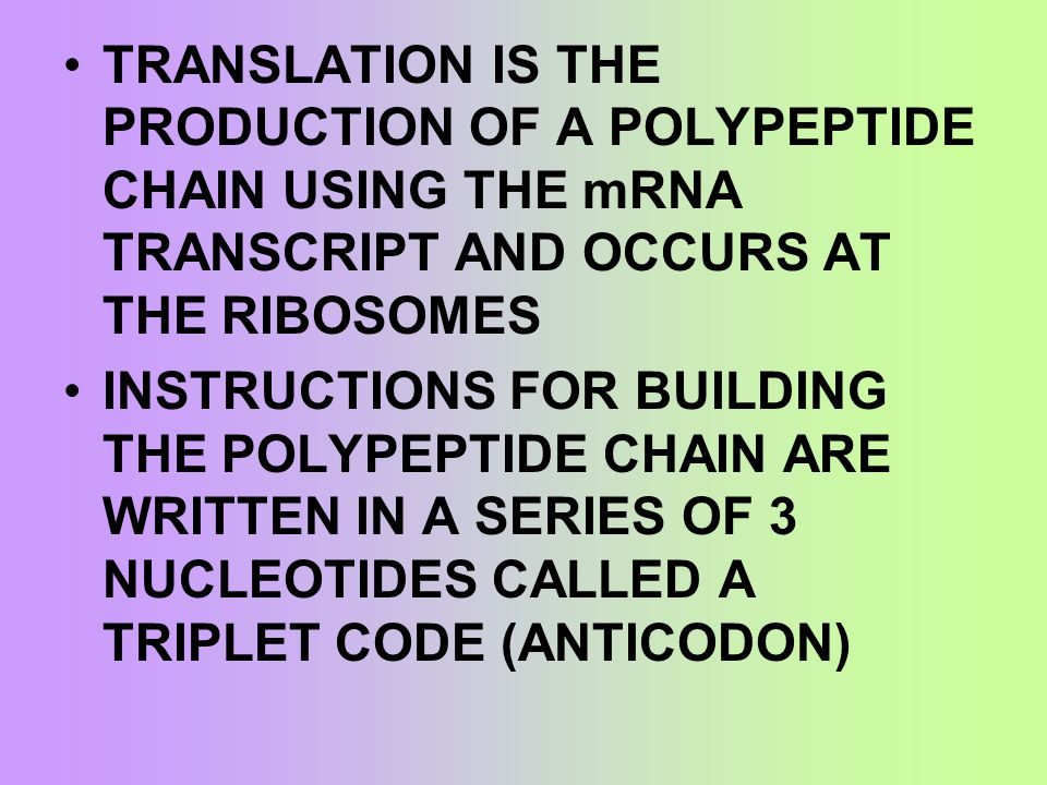 TRANSLATION IS THE PRODUCTION OF A POLYPEPTIDE CHAIN USING THE mRNA TRANSCRIPT AND OCCURS AT THE RIBOSOMES