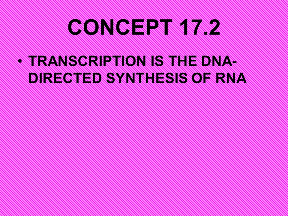 CONCEPT 17.2 TRANSCRIPTION IS THE DNA-DIRECTED SYNTHESIS OF RNA