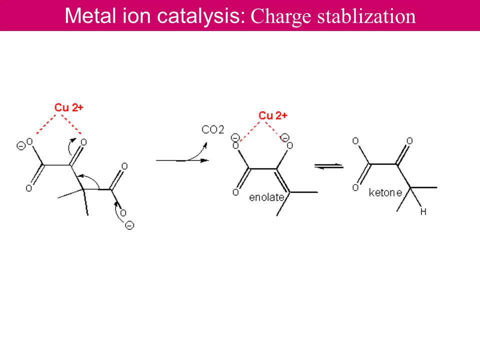 Metal ion catalysis: Charge stablization