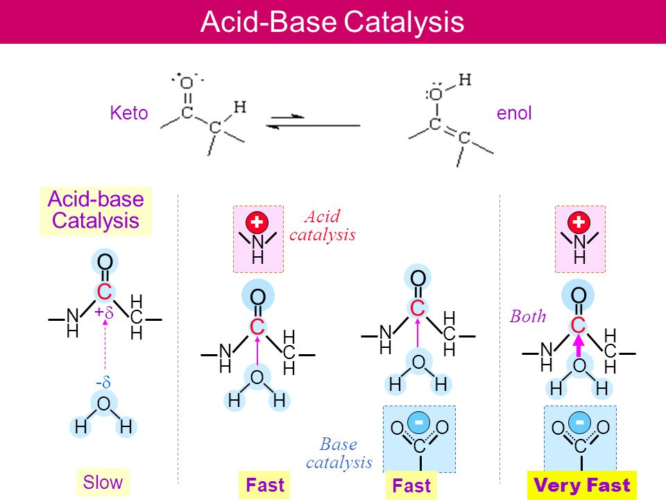 E5-2 Acid-Base Catalysis - - Acid-base Catalysis + + C O = C O = C O =