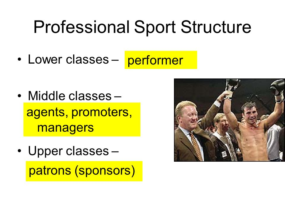 Professional Sport Structure