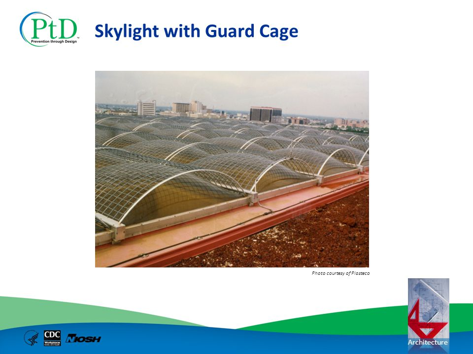 Skylight with Guard Cage