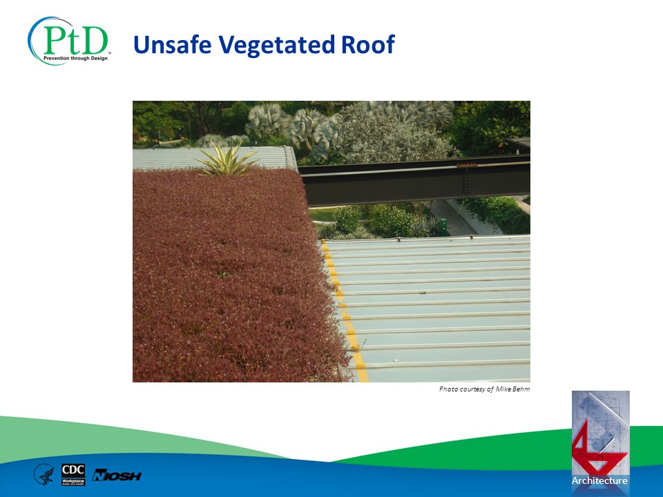 Unsafe Vegetated Roof Photo courtesy of Mike Behm