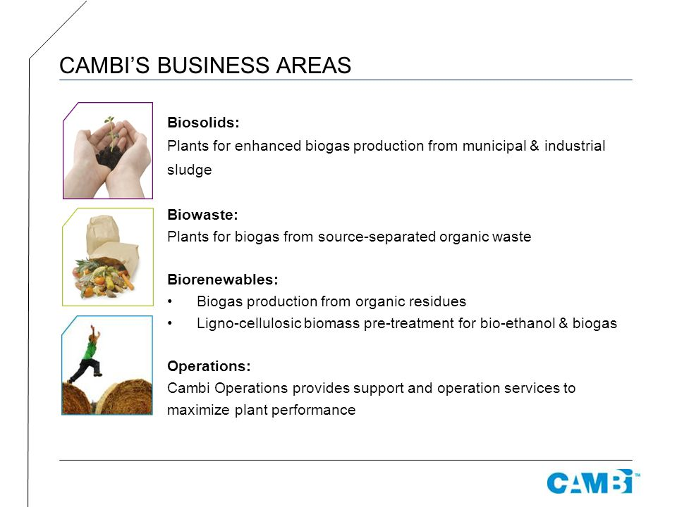 CAMBI'S BUSINESS AREAS