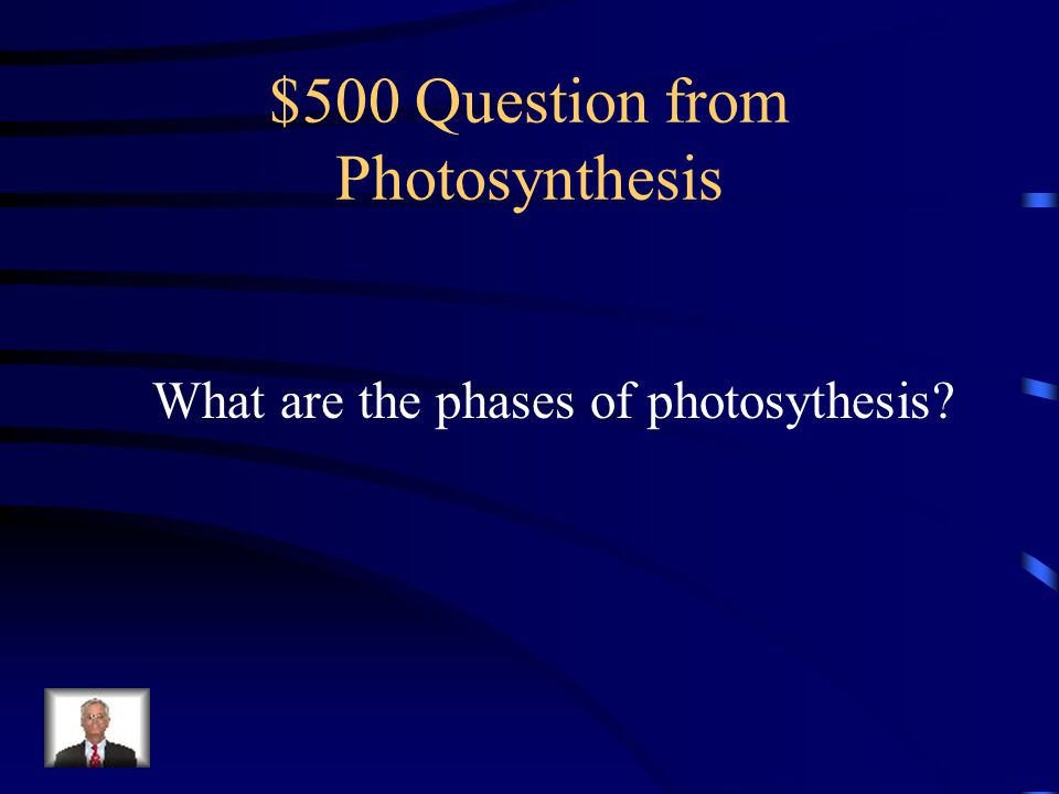 $500 Question from Photosynthesis