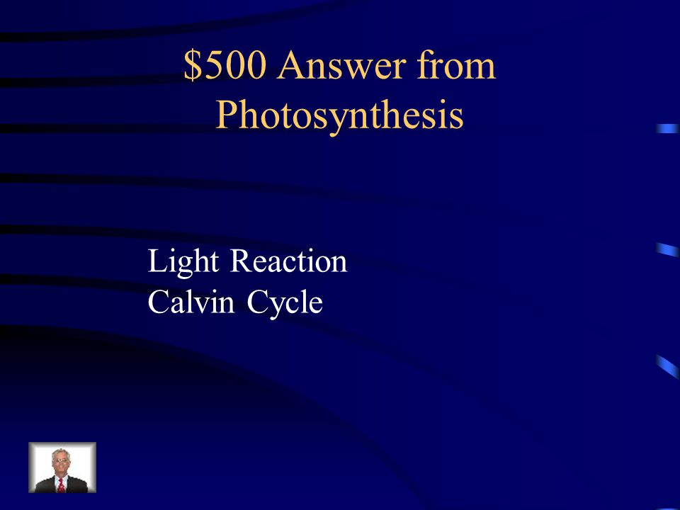 $500 Answer from Photosynthesis