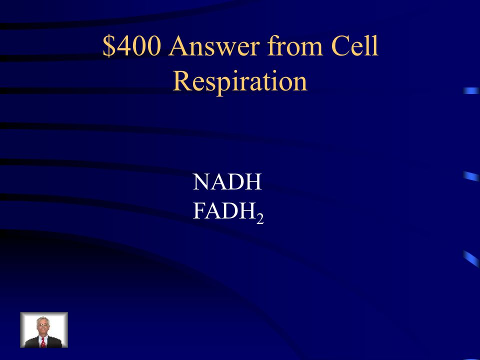 $400 Answer from Cell Respiration