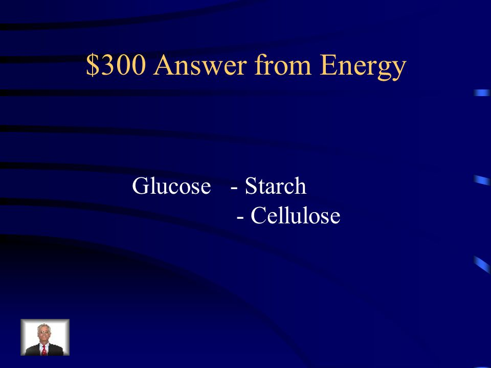 $300 Answer from Energy Glucose - Starch - Cellulose
