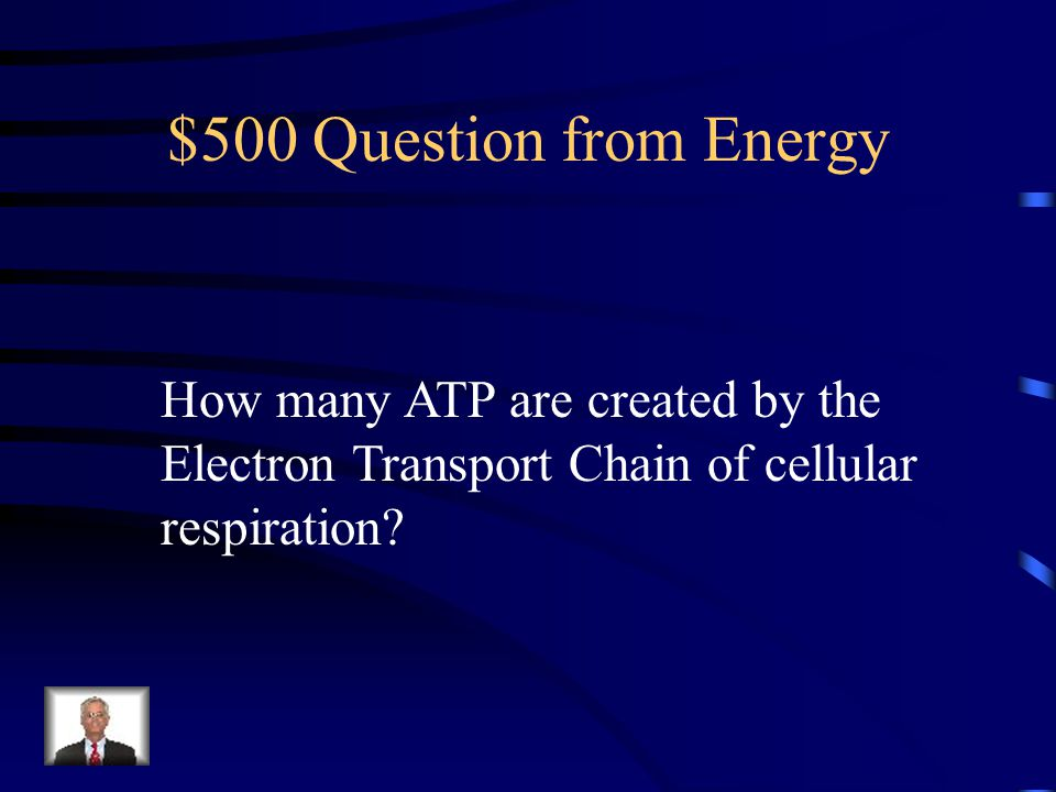 $500 Question from Energy How many ATP are created by the Electron Transport Chain of cellular respiration