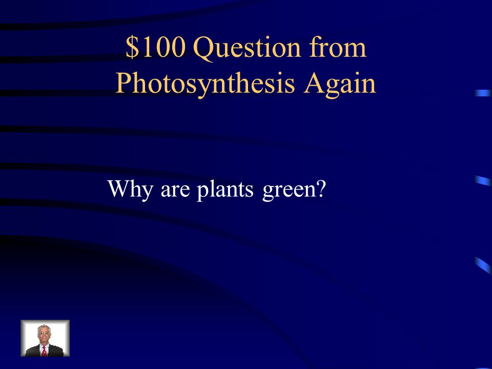 $100 Question from Photosynthesis Again