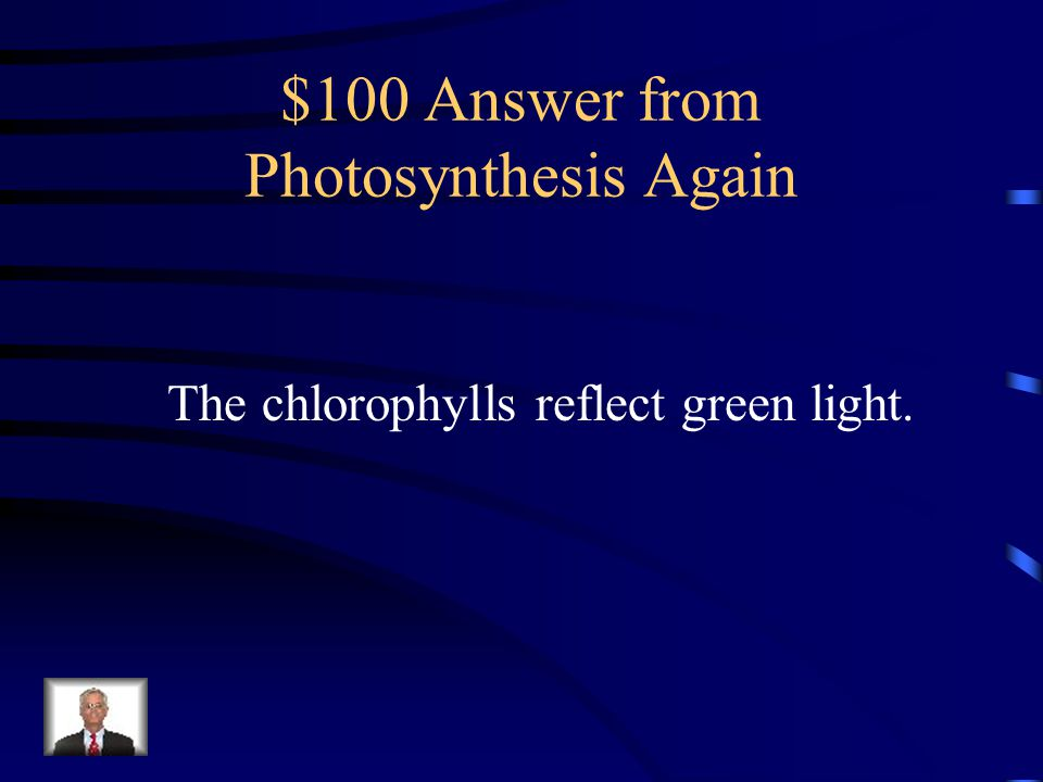 $100 Answer from Photosynthesis Again