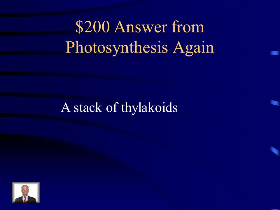 $200 Answer from Photosynthesis Again