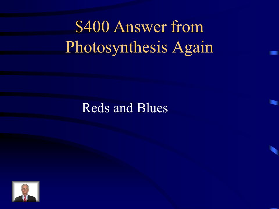 $400 Answer from Photosynthesis Again