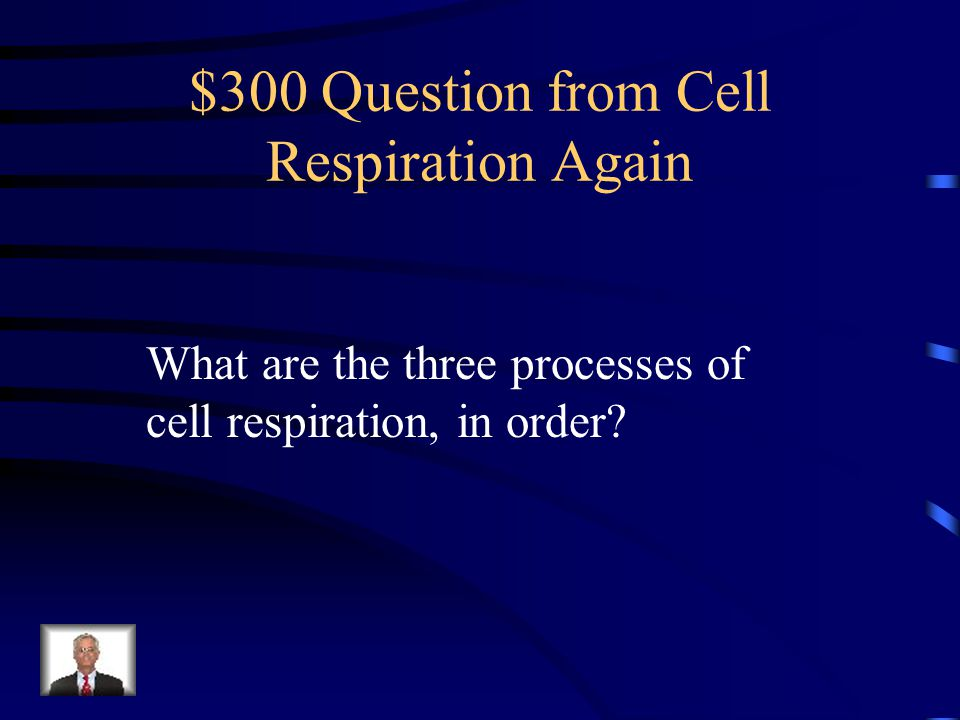 $300 Question from Cell Respiration Again
