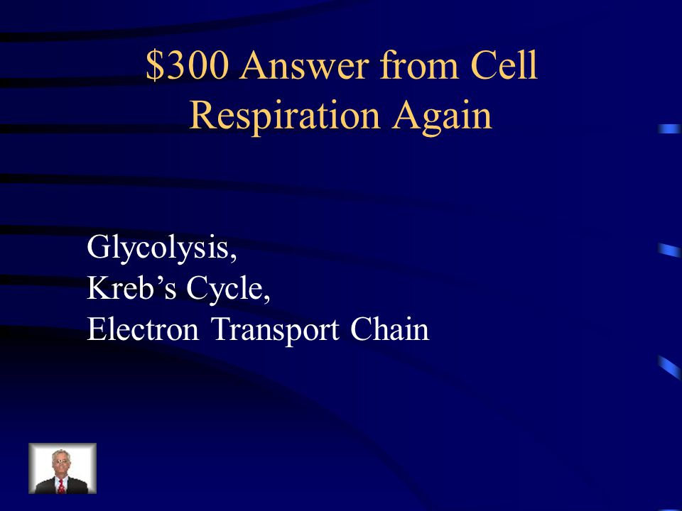 $300 Answer from Cell Respiration Again